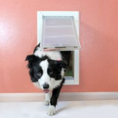 Wall Mount Dog Doors Single Flap
