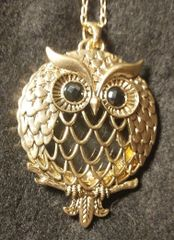 Owl Magnifying Glass Necklace Pendant