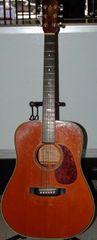 Alvarez DY-51 Accoustic Guitar