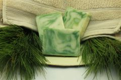 Ivy Farm Naturally Soap Bar - FIr Needle
