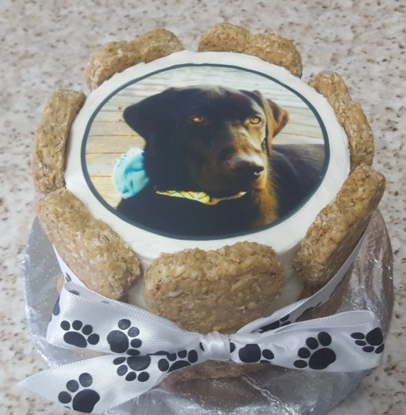 Shop Shaggy Dog Bakery