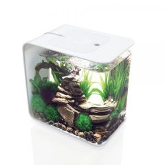 biOrb FLOW 15L Aquarium with MCR LED - White 46875