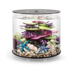 biOrb TUBE 15 Aquarium - 4 gallon Black - 45939