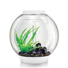biOrb CLASSIC 60 Aquarium - 16 gallon Silver - 45727
