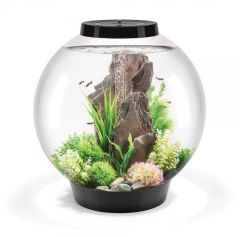 biOrb Classic 60 Aquarium with MCR LED Black 45751