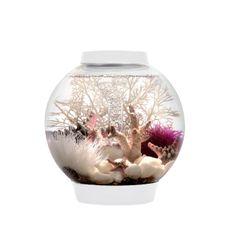 biOrb CLASSIC 15 Aquarium - 4 gallon White 45625