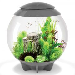 biOrb HALO 60L with MCR LED - Grey 48481