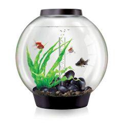 biOrb CLASSIC 60 Aquarium - 16 gallon Black - 45722