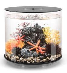 biOrb TUBE 35 Aquarium with MCR - Black 45984