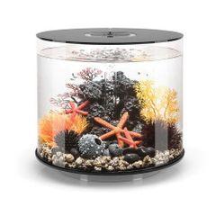 biOrb TUBE 35 Black Aquarium - 9.2 gallon 45979