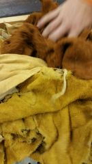 DEER HIDE SMALL HIDES AND PEACES MIXED COLOR SUEDE