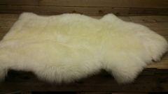 sheep skin / rug