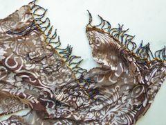 Earth Tone Silk Devore Scarf Hand Beaded Fringe