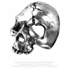 Alchemy Ruination Skull Ring