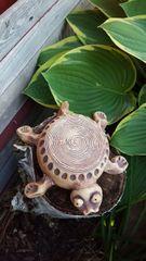 Flower top turtle bowl #2