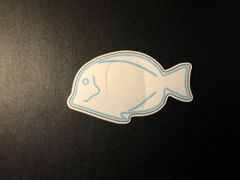 Blue Fish Design Silly Patch