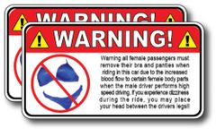 2 Pack Funny Warning Decal Sticker NO BRA & PAINTIES Vinyl Graphic 3M Trunk Car