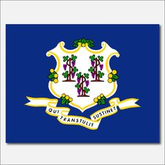 CONNECTICUT STATE FLAG VINYL DECAL STICKER