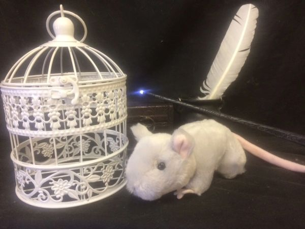Rat Familiar - with or without cage