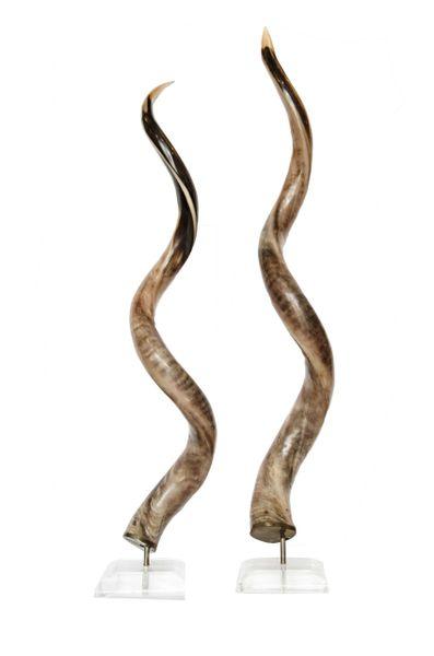 Rare Pair of Antelope Horns