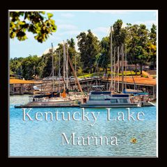 A Kentucky Lake Marina