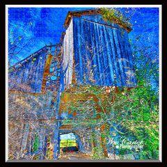 Remains of Barn Carlisle County Kentucky