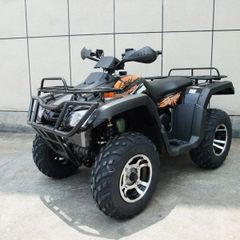 Monster 300cc 4x4
