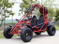 Spider 200cc GoKart
