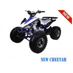 "NEW 125cc 8"" Sport Chrome TaoTao"