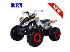 Tao Motor REX ATV