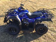 Canyon 250cc Utility RPS