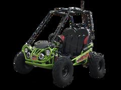 Trailmaster Mini XRX/R