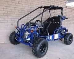 110cc Youth GoKart TaoTao