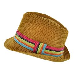 Trendy Multi color and Camel Fedora