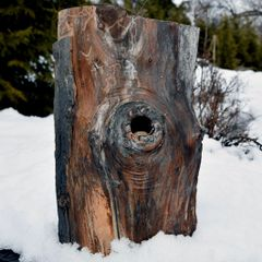 SOLD Adirondack Birdhouse