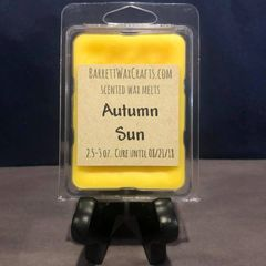 Autumn Sun scented wax melt.
