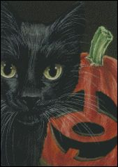 Halloween Black Cat & Pumpkin 1