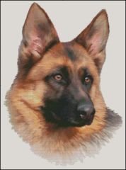 German Shepherd NB