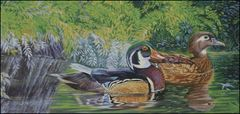 Bayou Wood Ducks