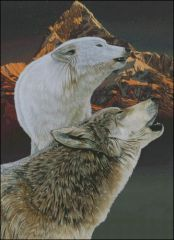 Mountain Wolves