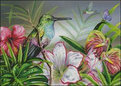Lovely Hummingbird