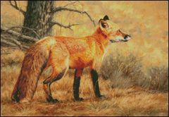 Autumn Fire Red Fox