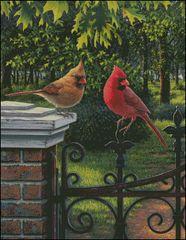 Summer Cardinals