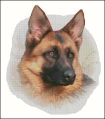 German Shepherd - HR