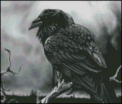 Just Raven