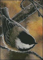 Autumn Chickadee - MW