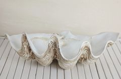 Vintage Polyresin Clam-Large