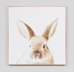 Lovable Bunny Canvas Print w/ Frame