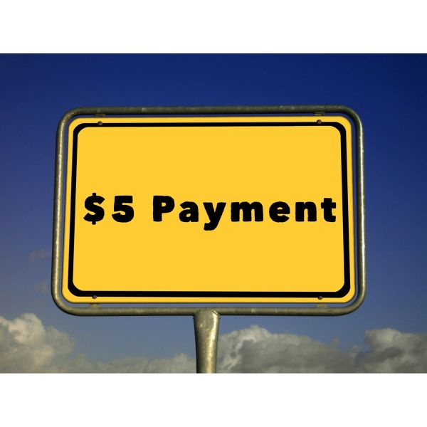 $5.00 Payment