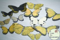12 large yellow wafer paper edible butterflies for cupcakes